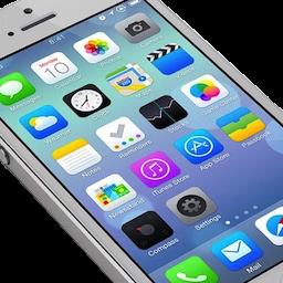 Mobile Device Application Development Wds