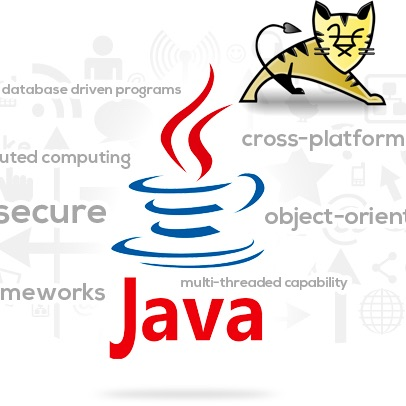 Java enterprise websites