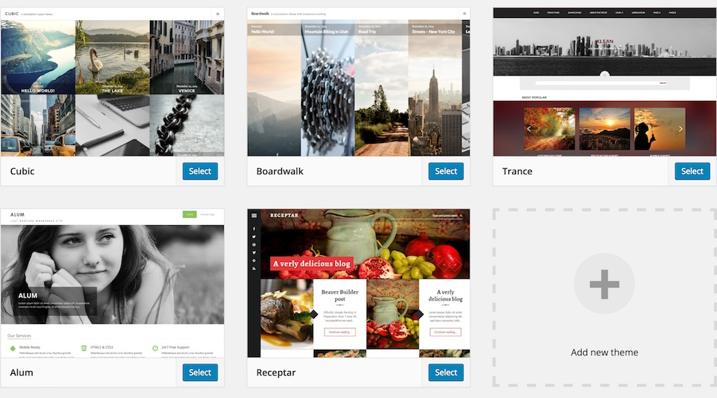 wordpress web design, php programming, themes, plugins